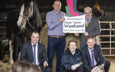 Bumper Numbers Attended Bank of Ireland Open Farm Weekend