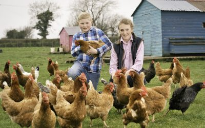 Farm Initiative Seeks Support from the Public